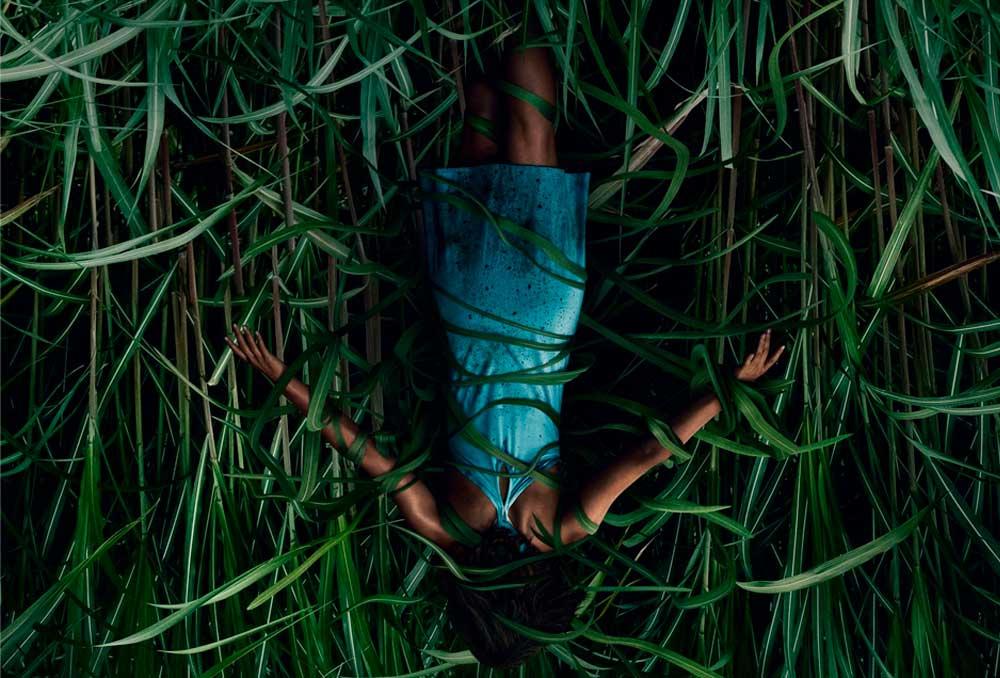 Já temos a data e algumas fotos de In the Tall Grass, novo filme de Stephen King na Netflix