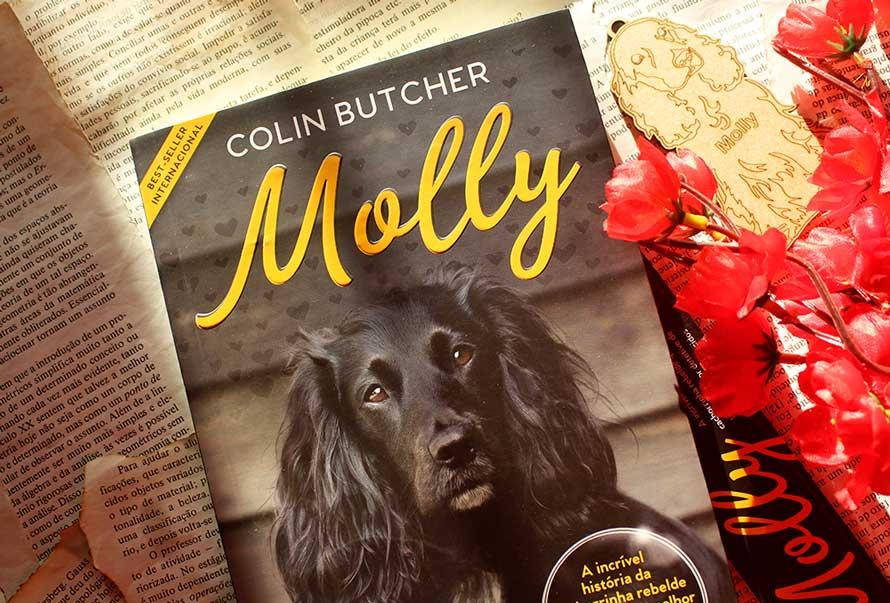 [RESENHA] Molly: A incrível história da cachorrinha rebelde que se tornou uma super detetive de animais desaparecidos – Colin Butcher